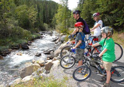 Family Bikes near Creek