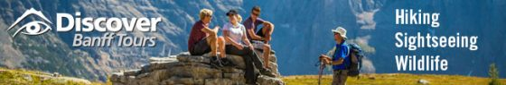 Discover Banff Tours - Hiking